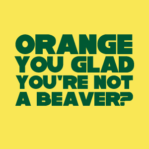Orange You Glad You're Not a Beaver?